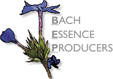 Bach Essence Producers