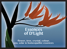 Essences of D'Light